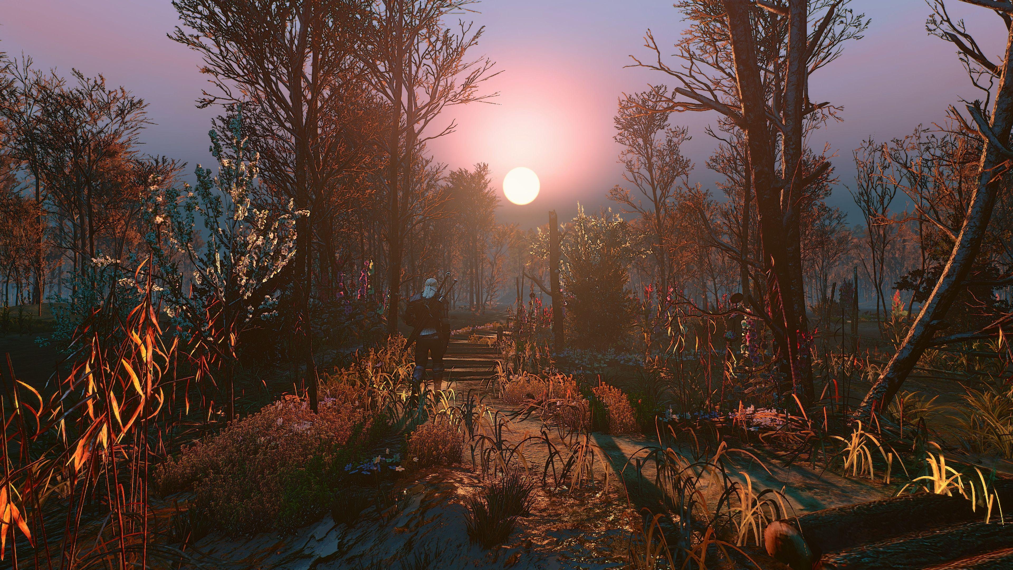 The Witcher 3 screenshots,Witcherscreenshots The