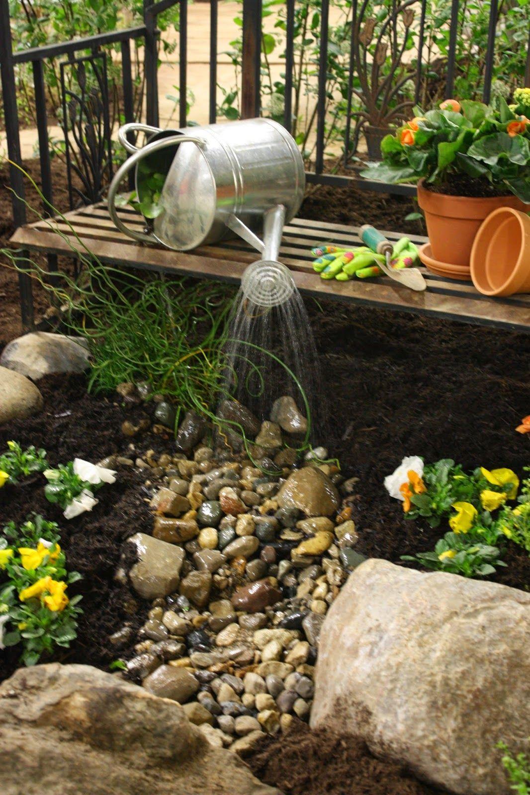 Garden Thyme with the Creative Gardener Garden