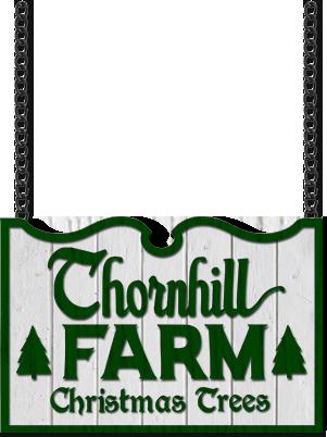 Fresh cut Christmas Trees from Thornhill Christmas Tree Farm near Chattanooga, Tennessee.
