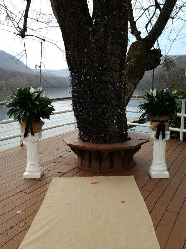 Peace lilies wrapped in burlap with deep purple ribbon streamers made a perfect frame for the ceremony site.