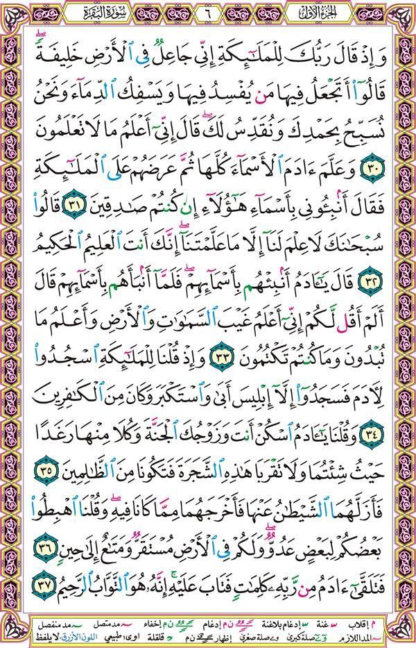 سورة البقرة صفحة رقم 6 Quran Verses Quran Verses