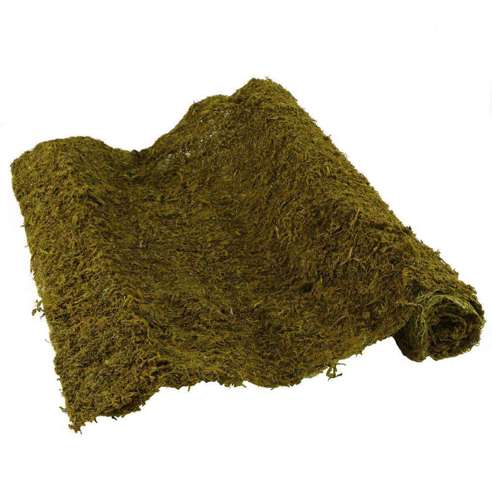 """20"""" Green Sheet Moss Roll: 48"""""""