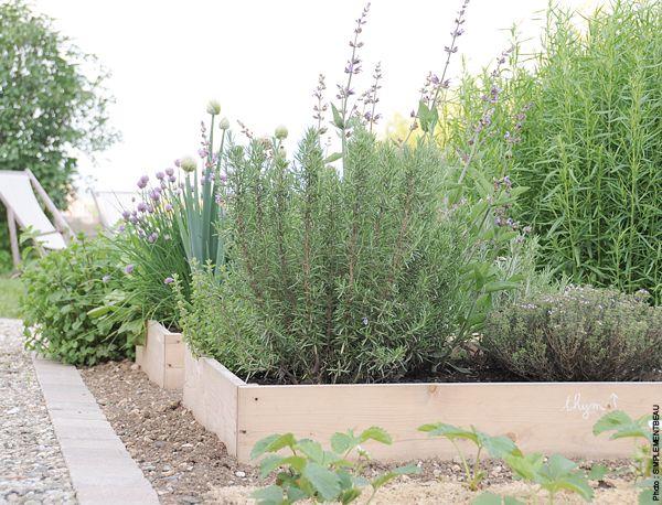 Carre jardin potager carre potager pinterest dream garden and gardens for Carre potager jardin