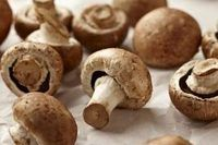 How to Build Your Own Mushroom Growing Kit | eHow
