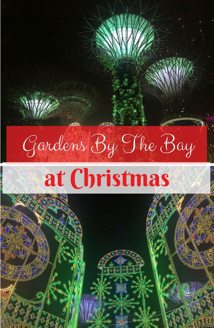 check out the gardens by the bay christmas light show 2017 light show singapore christmas singapore 2017 gardens by the bay christmas 2017 - Garden By The Bay Bar