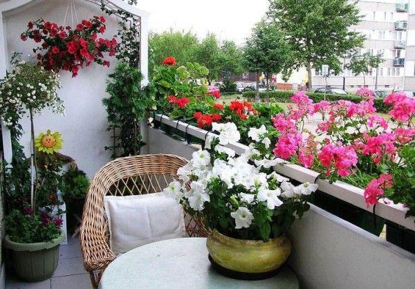 Las mejores flores para el balcón son aquellas que son fáciles de cultivar y además florecen de forma espectacular. Vamos a dar un repaso de las mejores plantas de flor que puedes tener en tu balcón