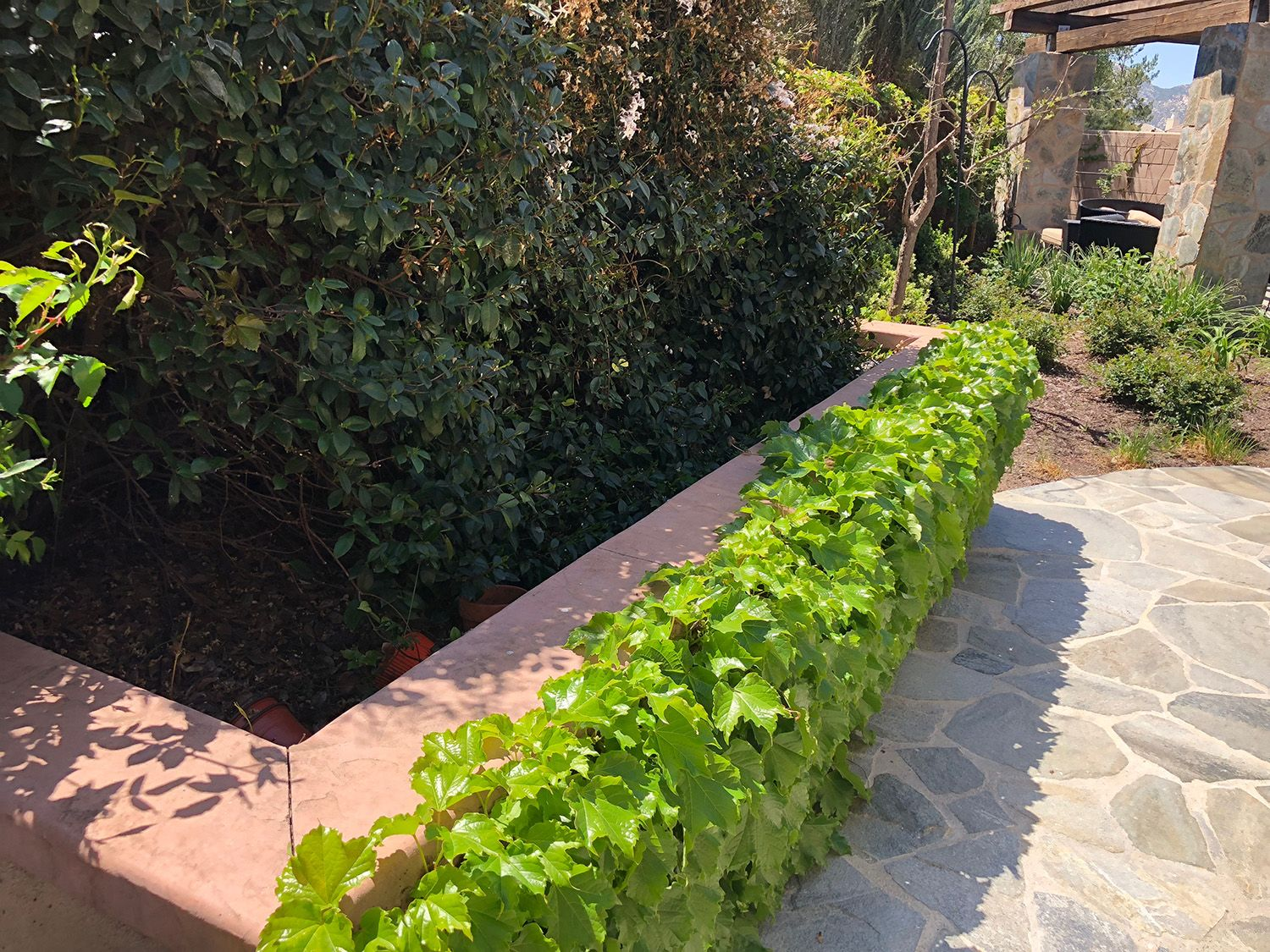 A Concrete Block With Stucco Raised Planter Box With Ivy Plantings And Flagstone Walkways Cottagegarden Planter Cottage Garden Plants Landscape Construction