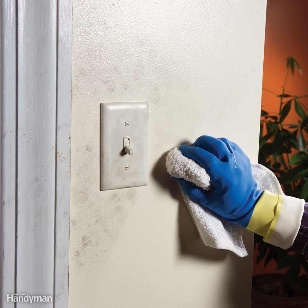 Paint Trim Or Walls First And Other Painting Questions Answered Diy Cleaning Products Household Hacks Painting Tips
