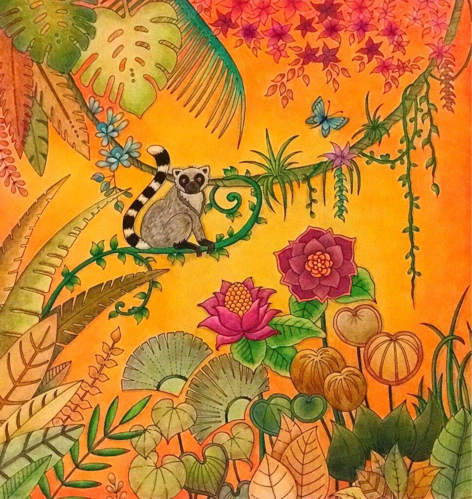 Pin By Yana Pshevoznitskaya On Magical Jangle Johanna Basford