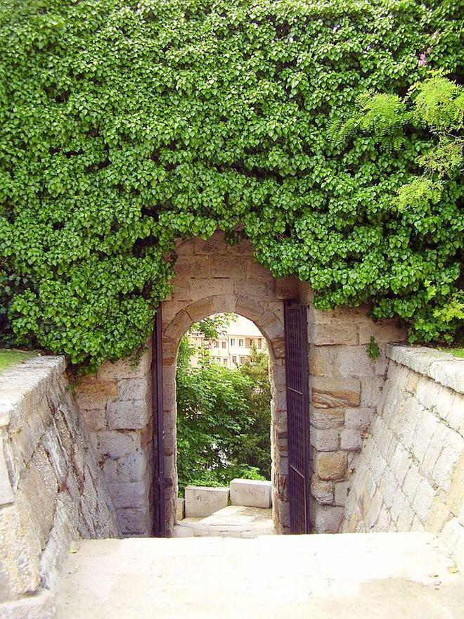 Portillo De La Traición En Zamora Burgos Jardines Del Castillo Zamorano