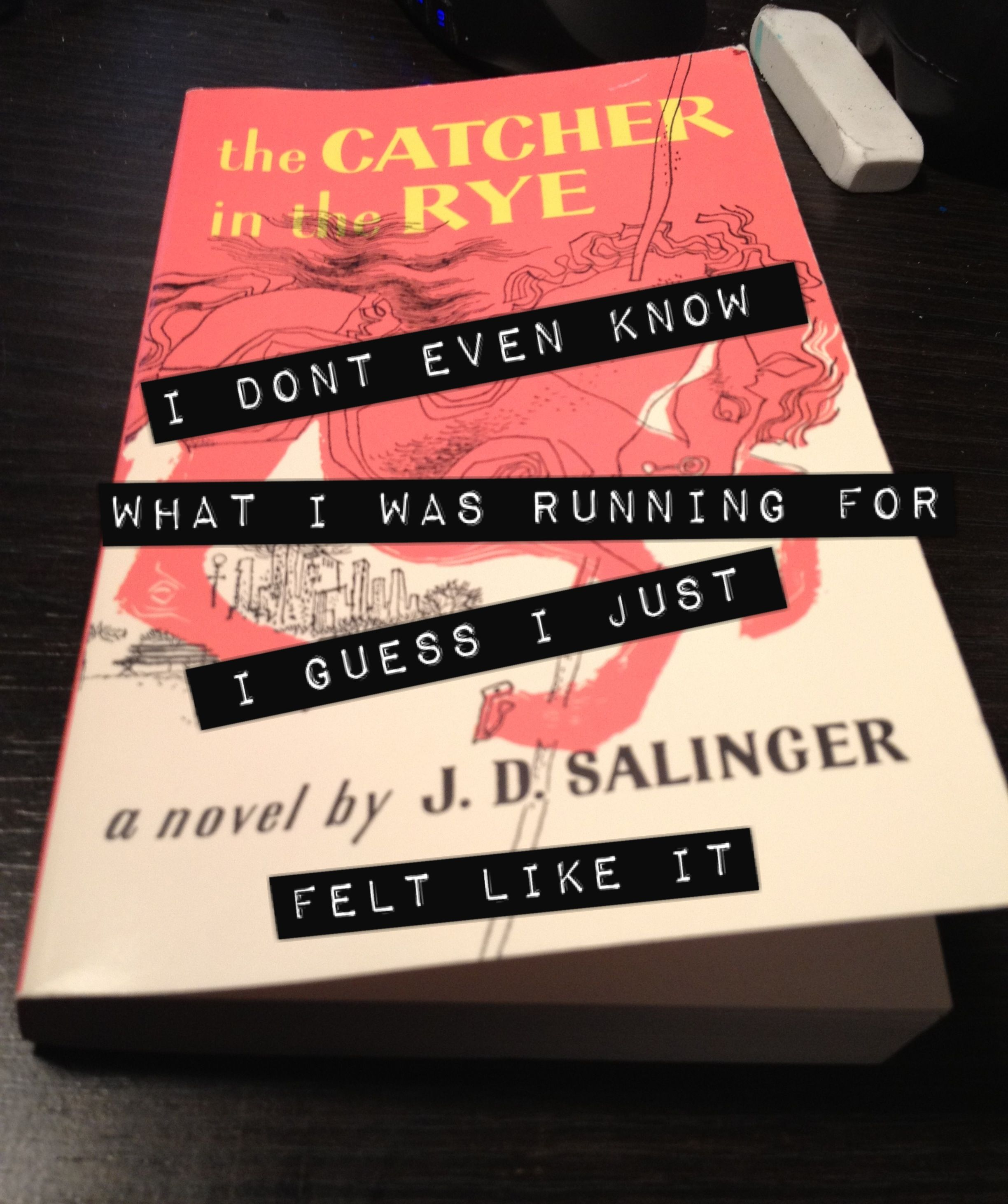 What is a good hook for and essay on The Catcher in the Rye?