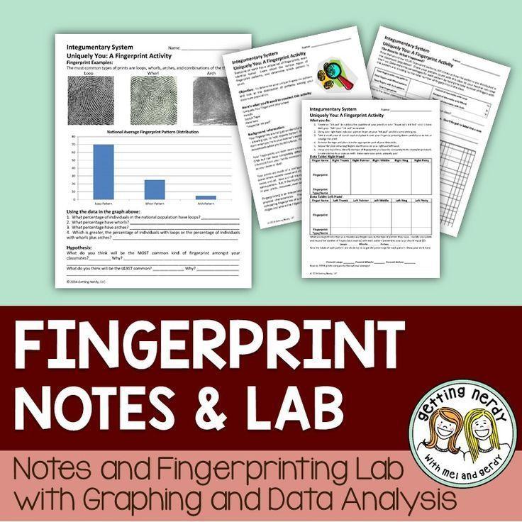 Integumentary System - CSI Fingerprinting Lab - copy tabla periodica nombre de los grupos