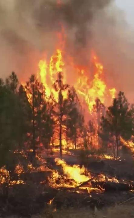 Okanogan Complex Fire  Acres New Evacuations Ordered