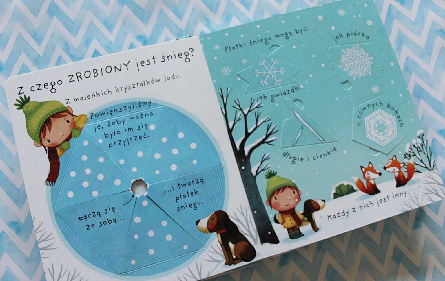 Moje Pierwsze Pytania Co To Jest Snieg Co To Jest Ksiezyc Co To Sa Drobnoustroje Book Cover Books Cover