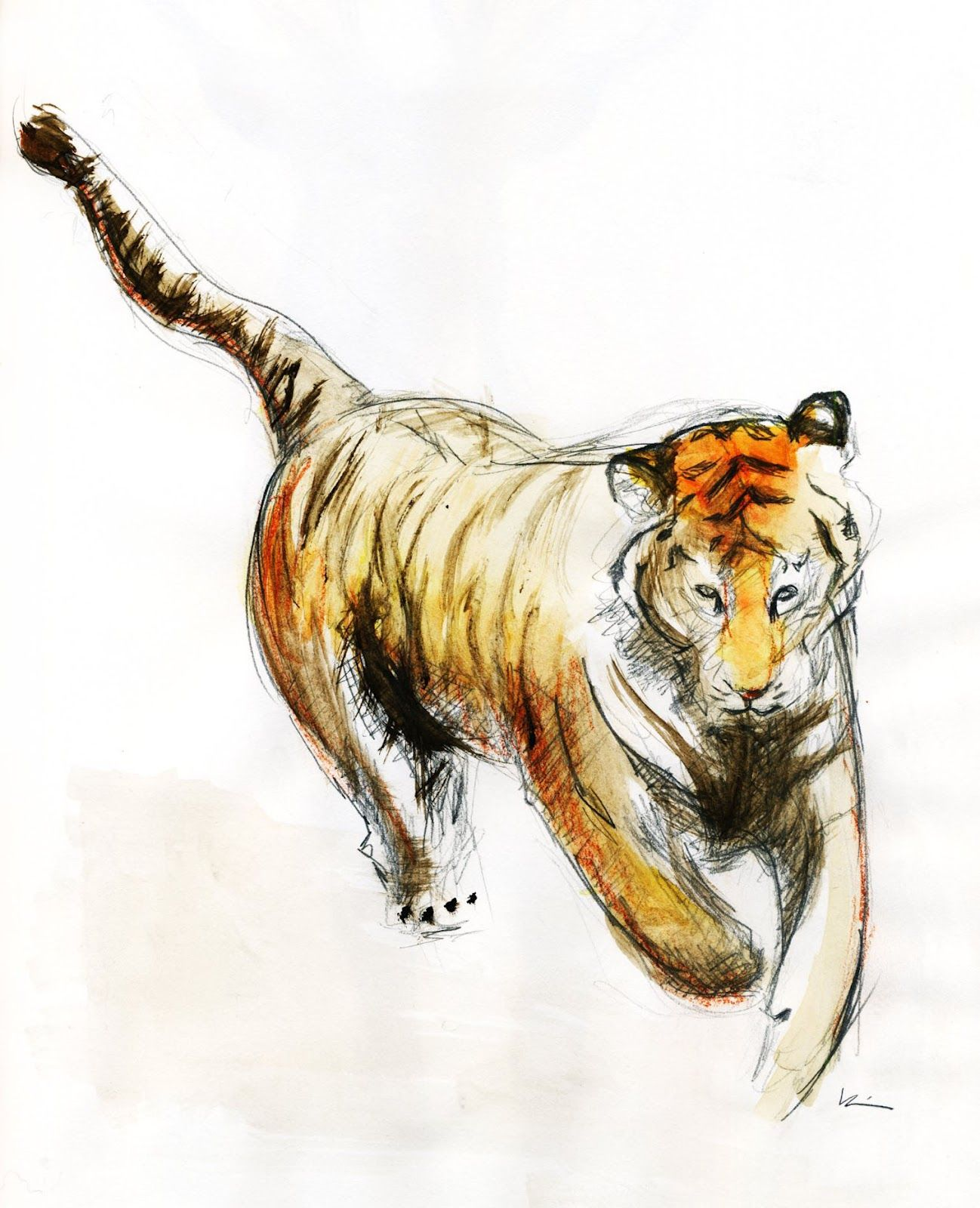 f206d392ccade Tiger watercolor Watercolor Tiger, Watercolor Animals, Watercolor Tattoo,  Big Tattoo, First Tattoo