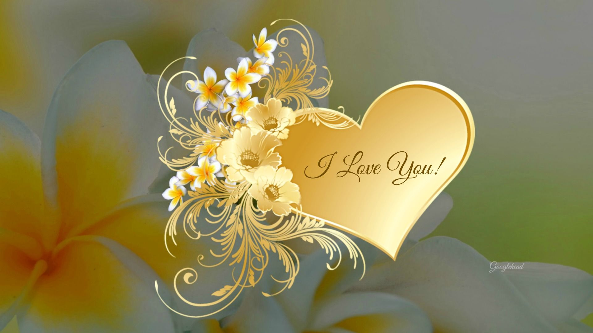Hd wallpaper i love you - Free Hd I Love You Wallpapers Cute I Love You Images 1920 1080 I Love