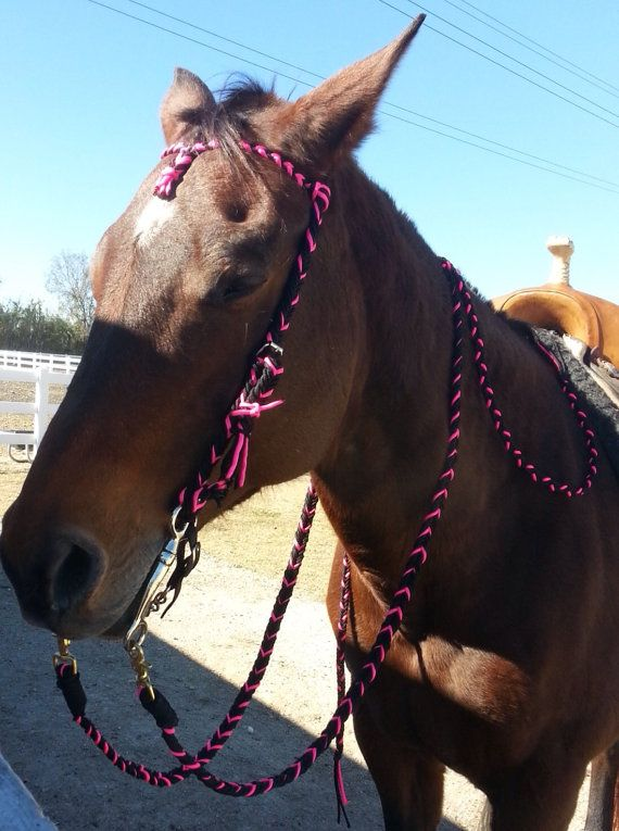 Hey i found this really awesome etsy listing at https for Paracord horse bridle