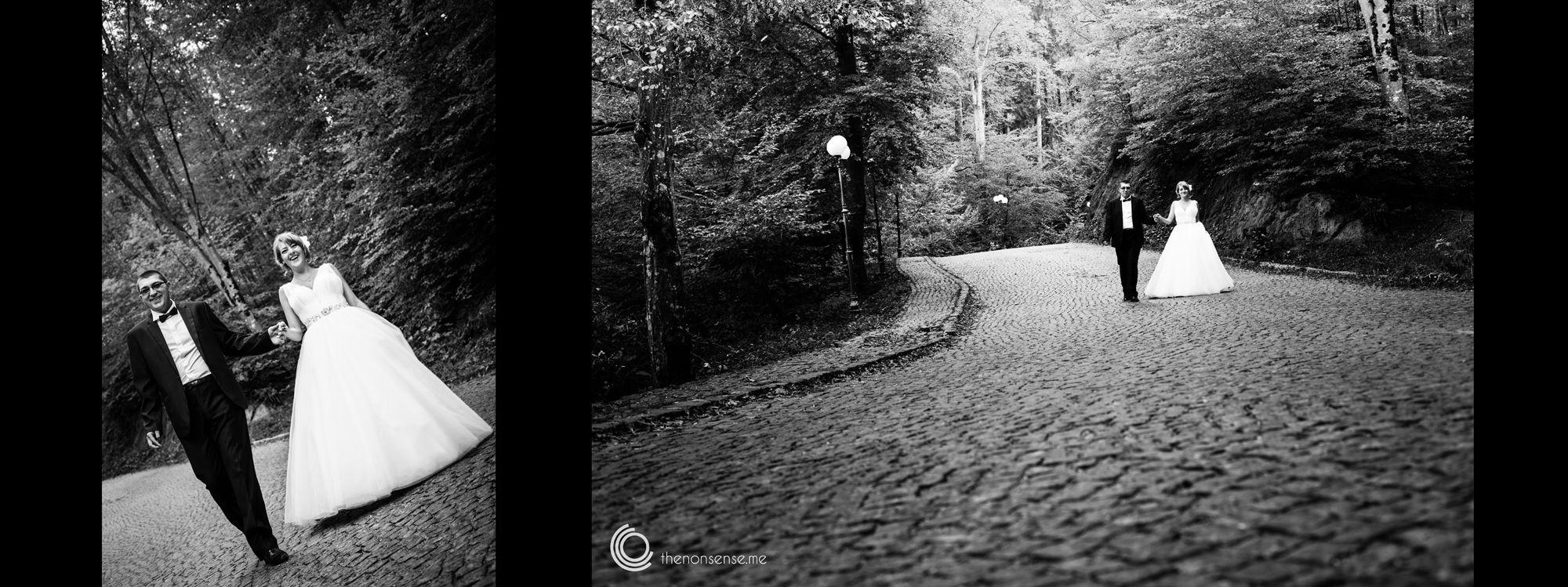 Copyright © 2014 by Larisa Suler – http://www.thenonsense.me