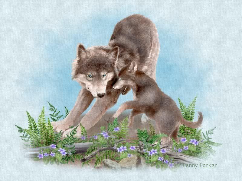Картинка волчица с волчатами для детей