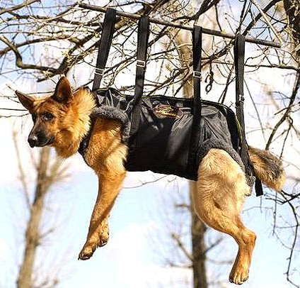 Tactical Insertion Harness For Gsd 109 00 Www All About