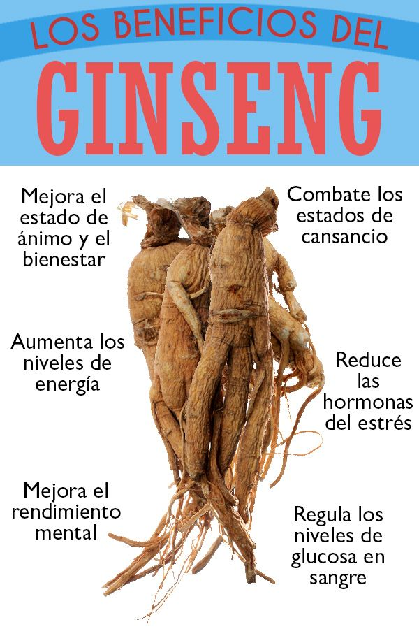 Beneficios Del Ginseng Para La Salud Ginseng Energia Plantas