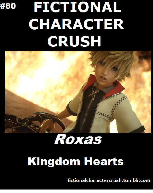I seriously live a sad life, but Roxas is pretty attractive. Not to mention, he's voiced by Jesse McCartney.