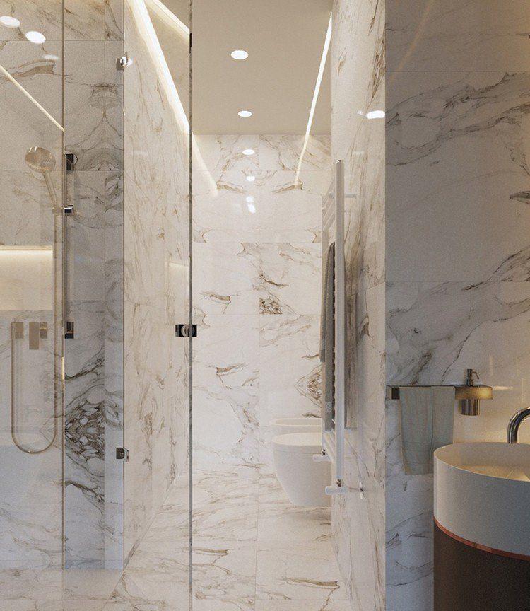 aménagement petit appartement avec salle de bain moderne, parement - salle de bain moderne avec douche italienne