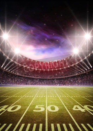 American Football Stadium Mural Murals Your Way Football Stadium Wallpaper Stadium Wallpaper American Football