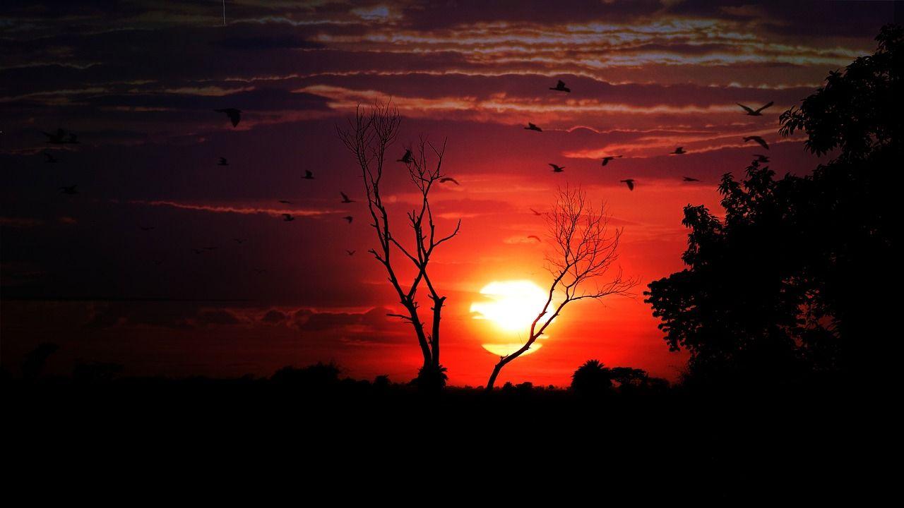 Free Image On Pixabay Sunset Dusk Dawn Evening Sunset Nature Wallpaper Dusk Hd wallpaper sunset river sun evening