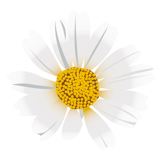 Daisy Flower Cartoon Png Image Download As Svg Vector Transparent Png Eps Or Psd Use This Daisy Flower Cartoon Svg For Cr Daisy Flower Flower Icons Flowers