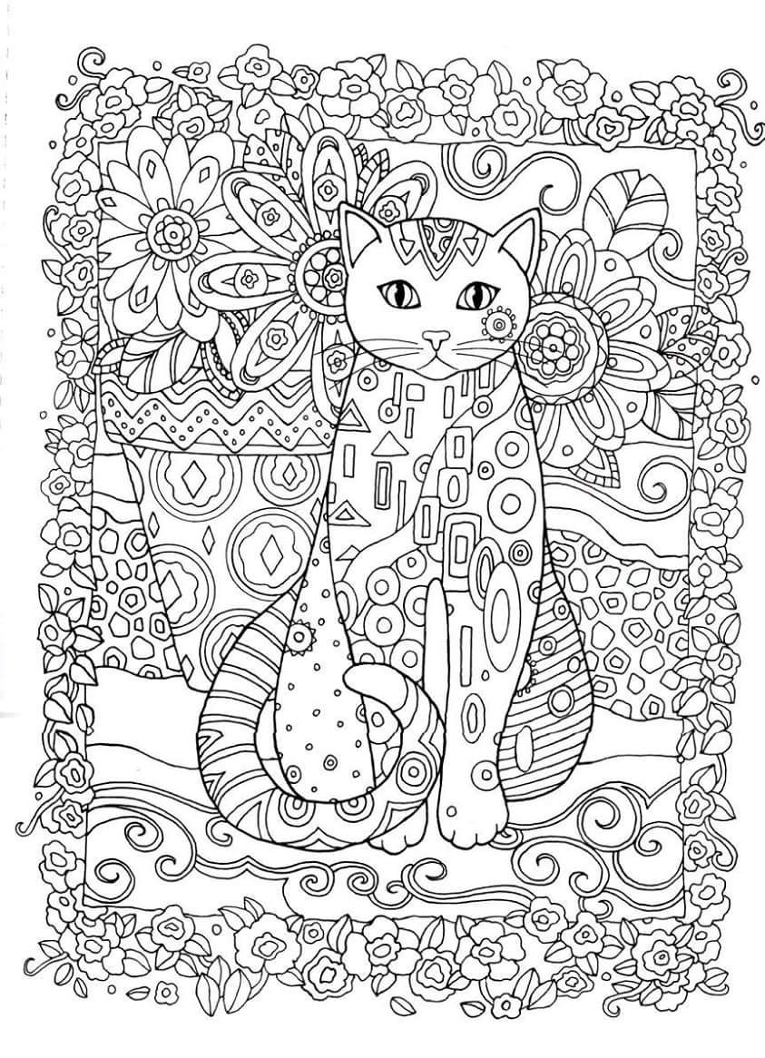 Gatos para colorir adult colouring pinterest coloring pages