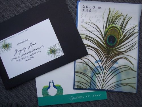 Vellum peacock feather overlay invitation