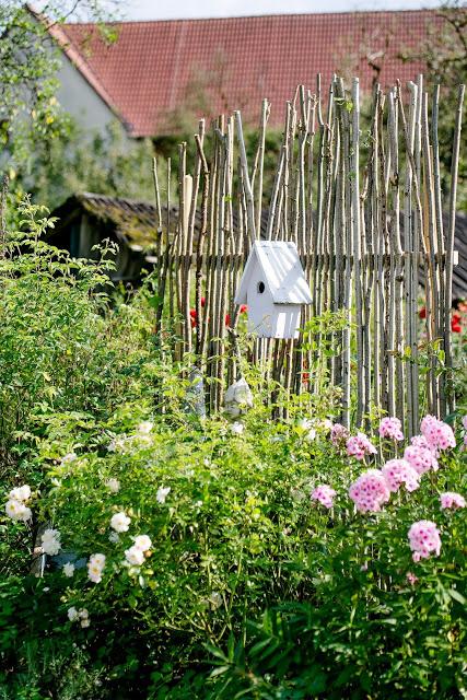 Sichtschutz Oder Unkonventionelle Rankhilfe Diy Pomponetti In 2020 Diy Trellis Garden Layout Backyard Projects