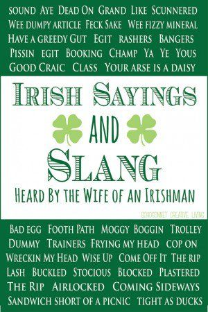 Irish Love Quotes Wedding Amazing Funny Quotes And Sayings About Irish  Ireland  Pinterest  Funny