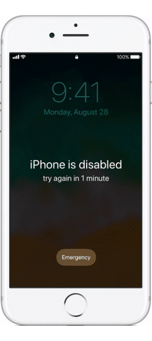 iPhone Passcode How to Unlock & Reset It Iphone