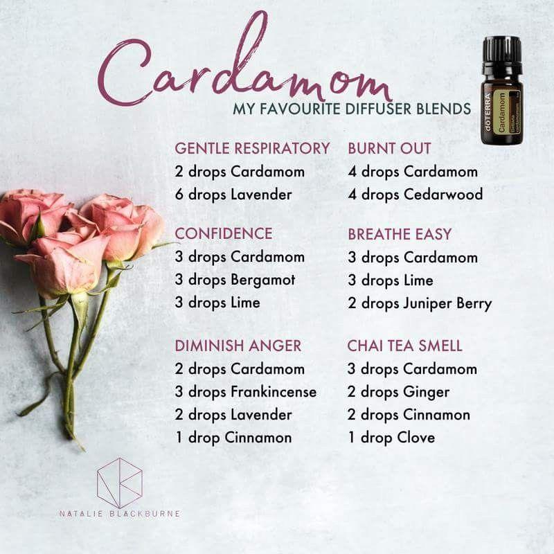 Cardamom Blends Cardamom Lavender Lemon Frankinsense Bergamot Cinnamon Cedarwood Juniper Cardamon Essential Oil Cardamom Essential Oil Living Essentials Oils