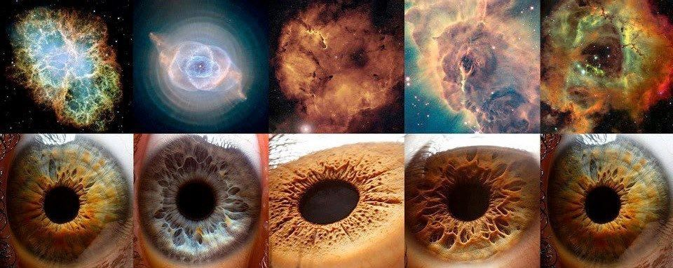 What is all matter in the universe composed of?