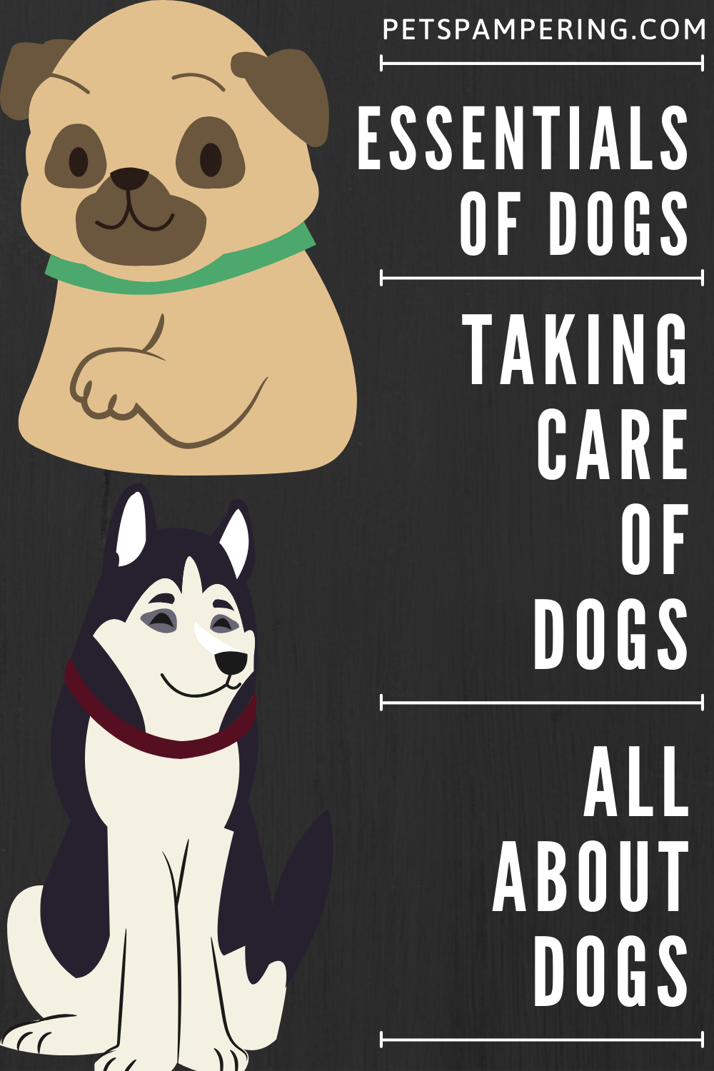 All about Dogs.  THINGS TO KNOW BEFORE HAVING A DOG. ESSENTIALS OF DOGS. TAKING CARE OF DOGS  #dog #dogsofinstagram #dogs #dogstagram #doglover #dogoftheday #doglife #doglovers #doggy #dogsofinsta #dogsofig #doggo #doglove