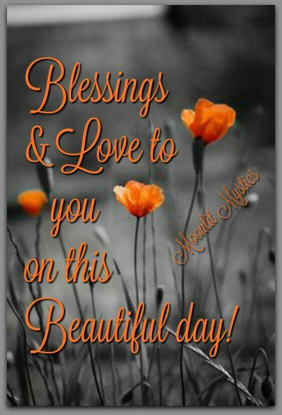 Good morning blessings and love to you on this beautiful day today good morning blessings and love to you on this beautiful day today m4hsunfo
