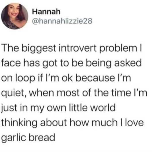 21 Memes That Will Only Be Funny If You're An Introvert.