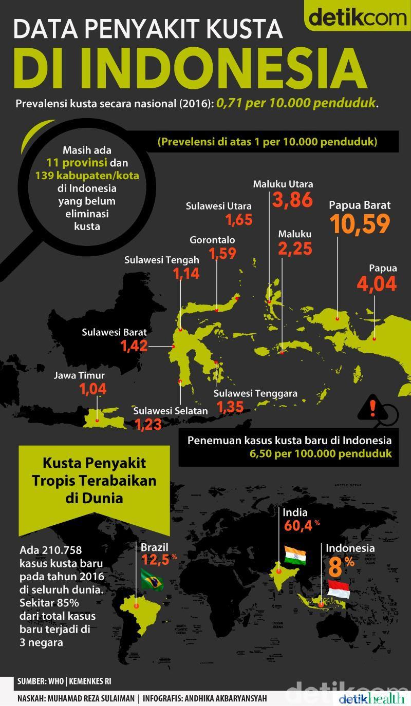 Infografis data kusta di Indonesia. Infografis, Penyakit