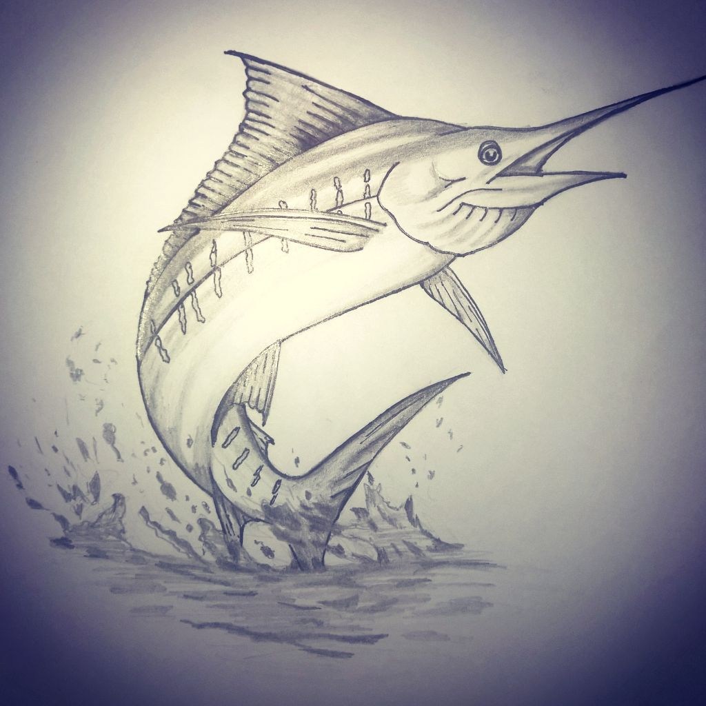 marlin fish drawing never better pinterest tattoo and tattoo art. Black Bedroom Furniture Sets. Home Design Ideas
