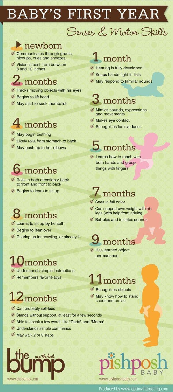 Baby's First Year Developments! Senses and motor skills! Great guide for baby's development! #healthypregnancytips #babydevelopments #babyfirstyeardevelopments