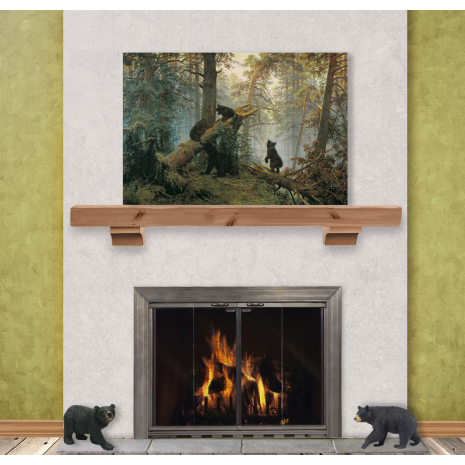Woodland Fireplace Door | Home, The o'jays and Stainless steel