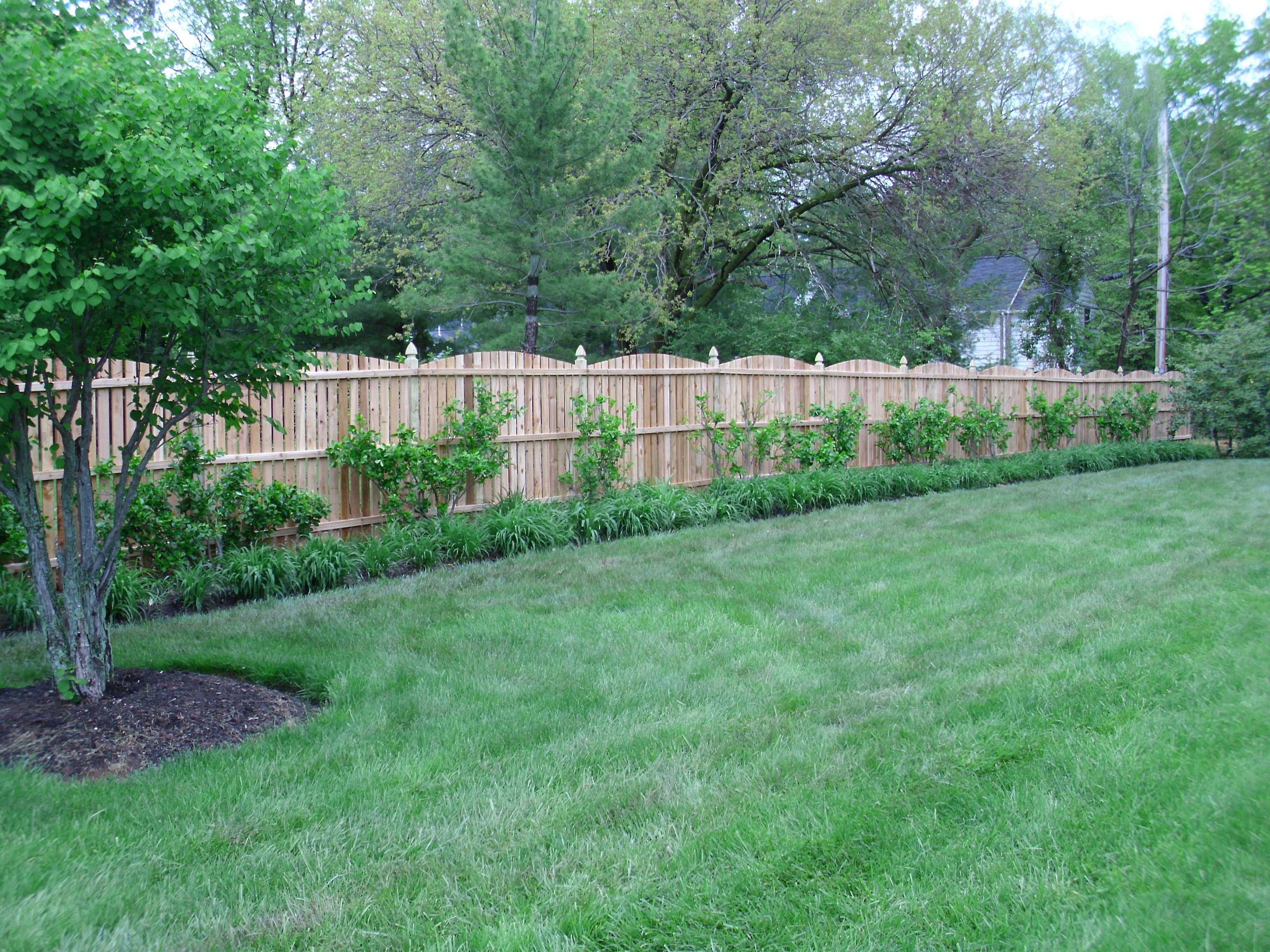 Convex Spaced Picket Fence With French Gothic Top Posts In
