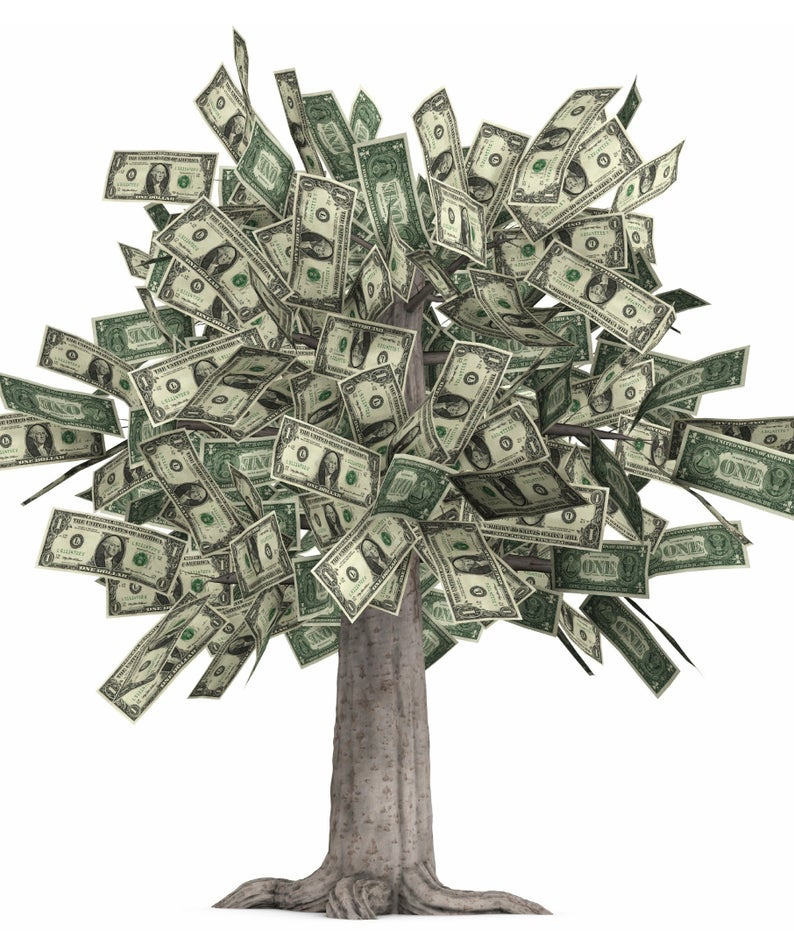 Money Tree Glossy Poster Picture Photo Grows Dollars Bills Etsy In 2021 Money Trees Money Pictures Money Images