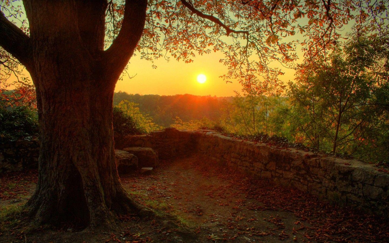 Autumn-wonderful-autumn