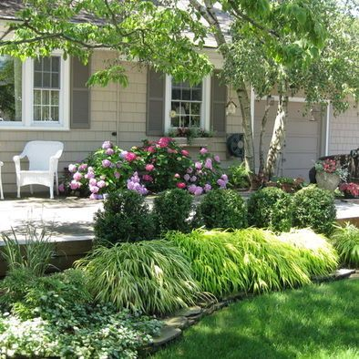 Like Plantings Around Patio Area Flowering Shrubs And Interesting