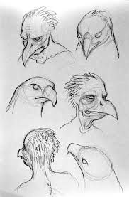 Image result for bird human hybrid | Birds project ...