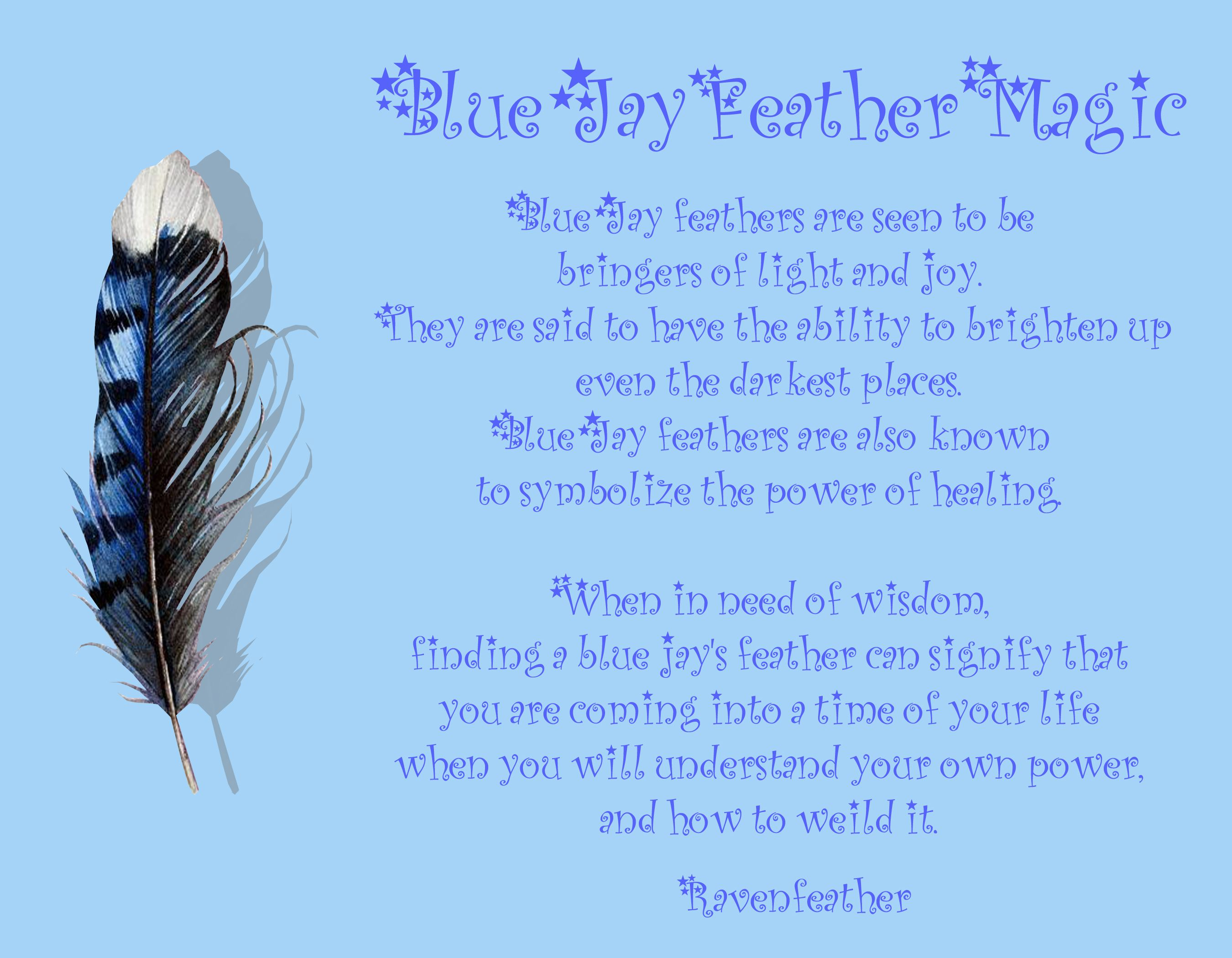 Blue jay feather magic history pagan wicca pinterest for Portent meaning